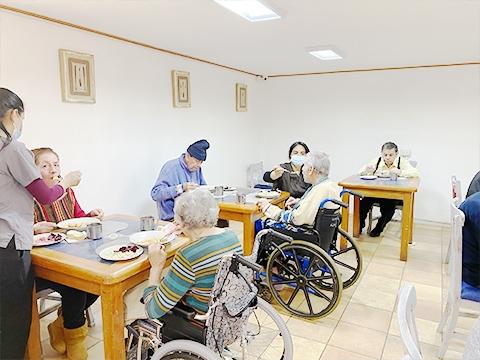 Servicios y Actividades Residencia Santiago Victor Manuel Ñuble Adulto Mayor CASA SENIOR